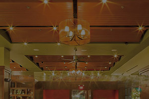 picture of specialty ceilings